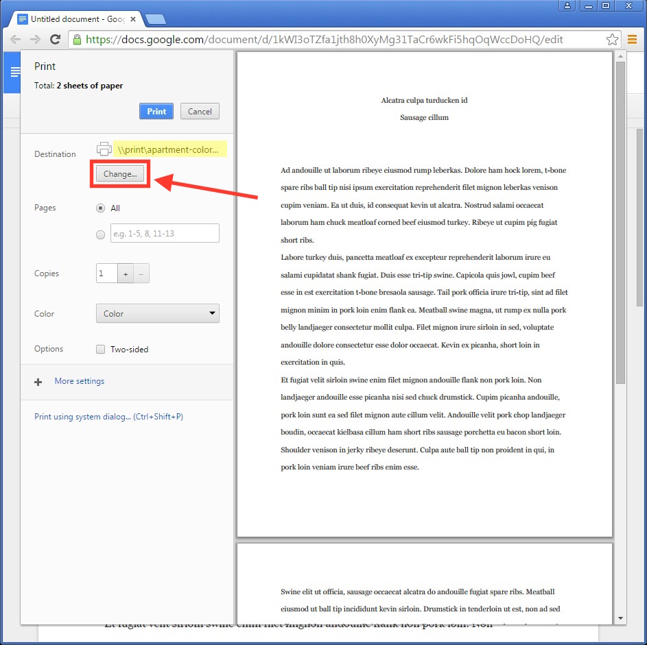 Screen shot of Google Drive print dialog showing the location of the 'Destination' listing and the 'Change…' button.